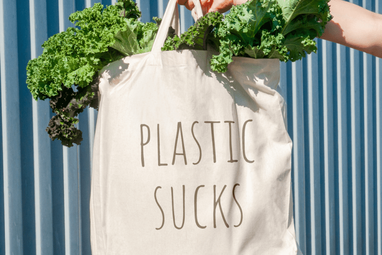 Going Plastic-Free in 2019: Green Alternatives to try at Home