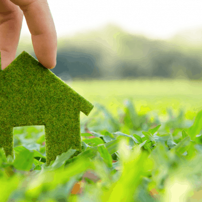 6 Green Changes for Eco-Friendly Home
